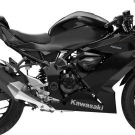 Kawasaki_Z125_Ninja125_2022_04